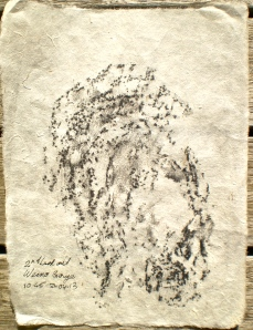 Weano Gorge frottage, 21/04/13, 10.45 am, taken on gorge rim at the lookout, graphite on rice paper.