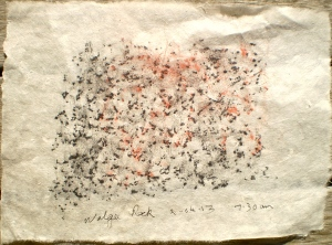 Walga Rock frottage, 22/04/13, 7.30 am, graphite and pastel on rice paper.