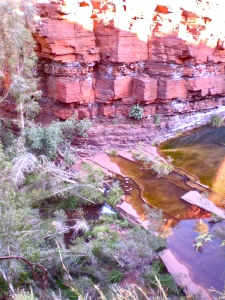 Banded iron gorge walls near Fortescue Falls in Dales Gorge.