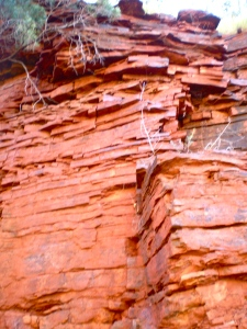 Banded Iron Formation in Dales gorge at the gorge rim