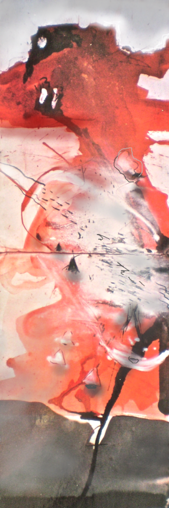 Kakadu landscape titled Anbangbang Billabong Revisited, 1/10, 2003, 25x75 cm print, 82x31 cm, on Hahnemuhle